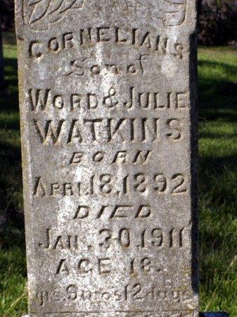WATKINS, CORNELIUS (CLOSE UP) - Denton County, Texas | CORNELIUS (CLOSE UP) WATKINS - Texas Gravestone Photos