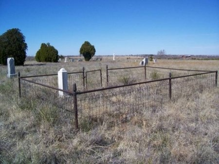 *CEMETERY OVERVIEW,  - Donley County, Texas |  *CEMETERY OVERVIEW - Texas Gravestone Photos