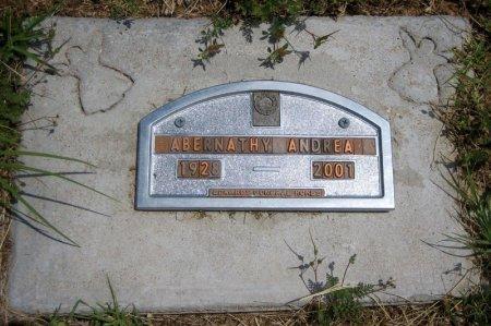 ABERNATHY, ANDREA MAY - Eastland County, Texas | ANDREA MAY ABERNATHY - Texas Gravestone Photos