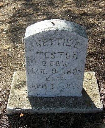TESTON, NETTIE E. - Eastland County, Texas   NETTIE E. TESTON - Texas Gravestone Photos