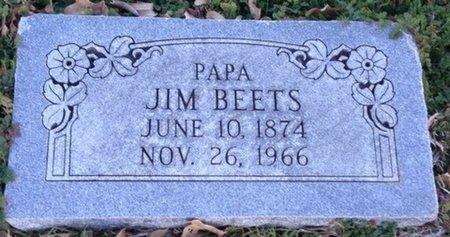 BEETS, JIM - Ellis County, Texas | JIM BEETS - Texas Gravestone Photos