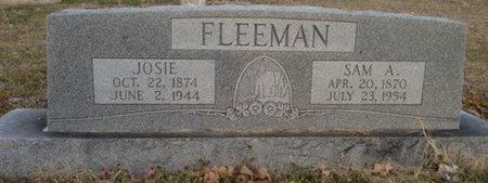 FLEEMAN, JOSIE - Ellis County, Texas   JOSIE FLEEMAN - Texas Gravestone Photos