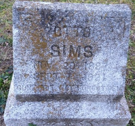 SIMS, OTTO - Ellis County, Texas | OTTO SIMS - Texas Gravestone Photos