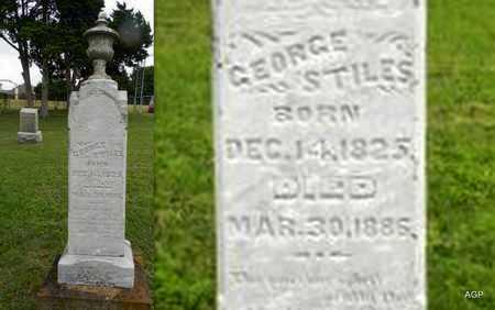 STILES, GEORGE - Ellis County, Texas | GEORGE STILES - Texas Gravestone Photos