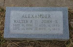 ALEXANDER, WALTER P. - Erath County, Texas | WALTER P. ALEXANDER - Texas Gravestone Photos