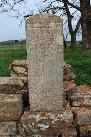 REASONER, SAMUEL HUSE - Erath County, Texas | SAMUEL HUSE REASONER - Texas Gravestone Photos