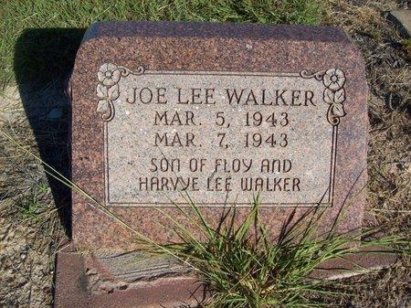WALKER, JOE LEE - Erath County, Texas | JOE LEE WALKER - Texas Gravestone Photos