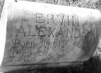ALEXANDER, ERVIN - Fannin County, Texas | ERVIN ALEXANDER - Texas Gravestone Photos
