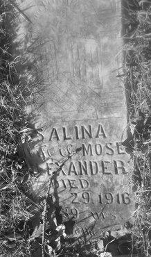 ALEXANDER, SALINA - Fannin County, Texas | SALINA ALEXANDER - Texas Gravestone Photos