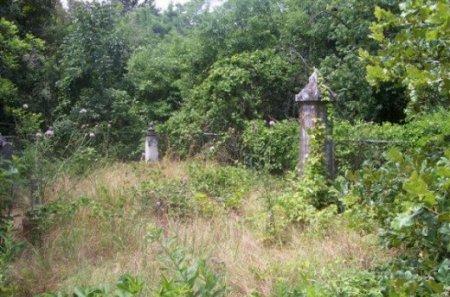 *CEMETERY VIEW, . - Fannin County, Texas | . *CEMETERY VIEW - Texas Gravestone Photos