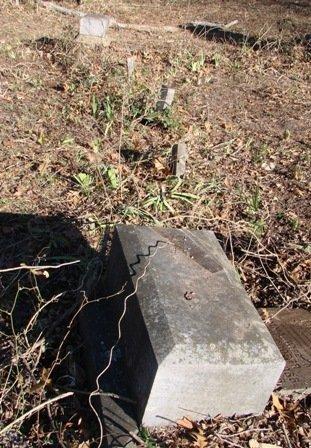 COOPER, FAMILY PLOT - Fannin County, Texas | FAMILY PLOT COOPER - Texas Gravestone Photos