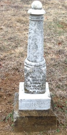 DORSEY, CATHARINE J. - Fannin County, Texas | CATHARINE J. DORSEY - Texas Gravestone Photos