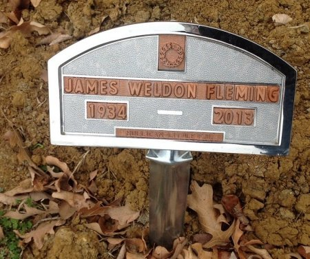 FLEMING, JAMES WELDON - Fannin County, Texas | JAMES WELDON FLEMING - Texas Gravestone Photos