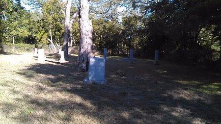 RILLEY, JOHN - Fannin County, Texas | JOHN RILLEY - Texas Gravestone Photos