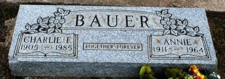 BAUER, CHARLIE F. - Fayette County, Texas | CHARLIE F. BAUER - Texas Gravestone Photos