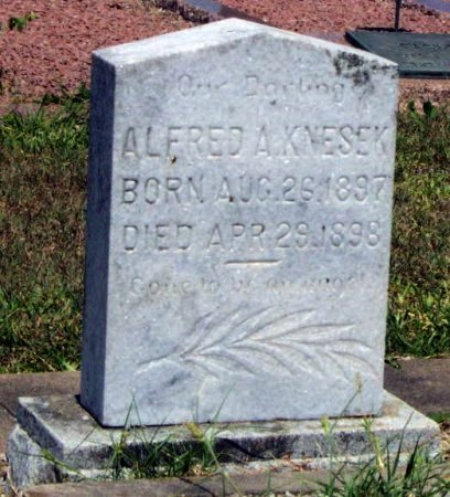 KNESEK, ALFRED A - Fayette County, Texas | ALFRED A KNESEK - Texas Gravestone Photos