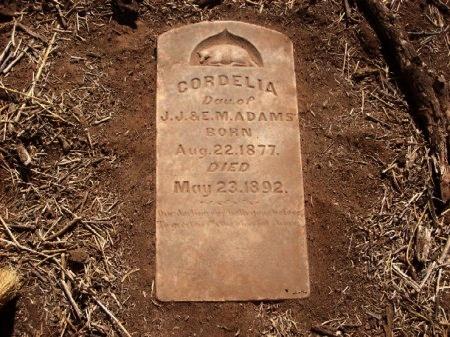 ADAMS, CORDELIA - Foard County, Texas | CORDELIA ADAMS - Texas Gravestone Photos