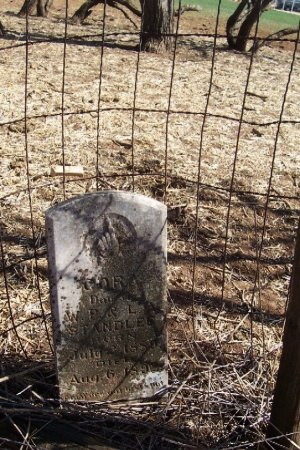 STANDLEE, CORA - Foard County, Texas   CORA STANDLEE - Texas Gravestone Photos