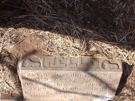 WELLS, MERONEY LEE - Foard County, Texas | MERONEY LEE WELLS - Texas Gravestone Photos