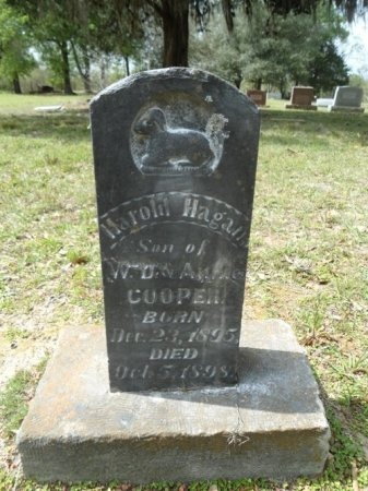 COOPER, HAROLD HAGAN - Fort Bend County, Texas | HAROLD HAGAN COOPER - Texas Gravestone Photos