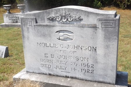 JOHNSON, MOLLIE CATHERINE - Franklin County, Texas | MOLLIE CATHERINE JOHNSON - Texas Gravestone Photos