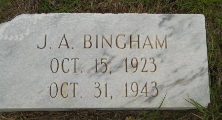 BINGHAM, J. A. - Gaines County, Texas | J. A. BINGHAM - Texas Gravestone Photos