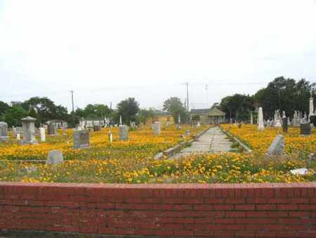 *NEW CITY OVERVIEW,  - Galveston County, Texas |  *NEW CITY OVERVIEW - Texas Gravestone Photos