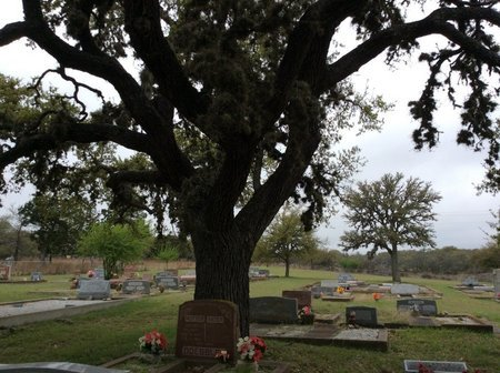 *INSIDE VIEW,  - Gillespie County, Texas |  *INSIDE VIEW - Texas Gravestone Photos