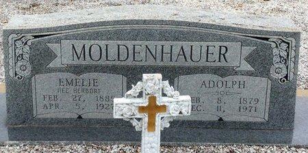 HERBORT MOLDENHAUER, EMELIE - Gillespie County, Texas | EMELIE HERBORT MOLDENHAUER - Texas Gravestone Photos