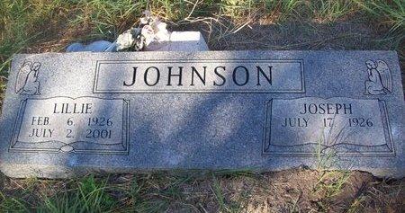 JOHNSON, LILLIE - Goliad County, Texas | LILLIE JOHNSON - Texas Gravestone Photos