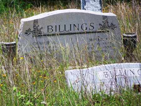 BILLINGS, MOLLIE E. - Gonzales County, Texas | MOLLIE E. BILLINGS - Texas Gravestone Photos