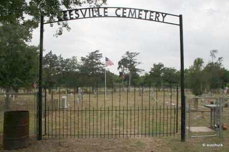 *ENTRANCE GATE,  - Gonzales County, Texas |  *ENTRANCE GATE - Texas Gravestone Photos