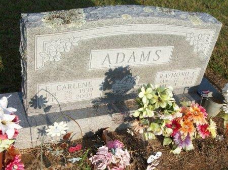 ADAMS, ELIZABETH CARLENE - Grayson County, Texas | ELIZABETH CARLENE ADAMS - Texas Gravestone Photos