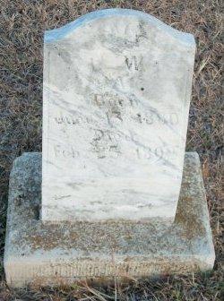 ADAMS, L. W. - Grayson County, Texas   L. W. ADAMS - Texas Gravestone Photos