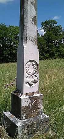 HOBBS BRAME, ELIZABETH JANE - Grayson County, Texas | ELIZABETH JANE HOBBS BRAME - Texas Gravestone Photos