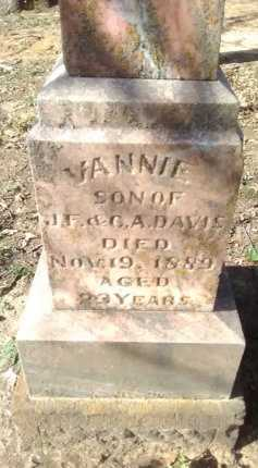DAVIS, VANNIE - Grayson County, Texas | VANNIE DAVIS - Texas Gravestone Photos