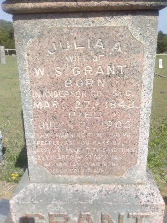 GRANT, JULIA ANN - Grayson County, Texas | JULIA ANN GRANT - Texas Gravestone Photos