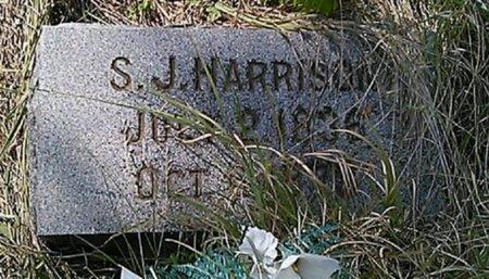 WHITE HARRISON, SARAH JANE - Grayson County, Texas | SARAH JANE WHITE HARRISON - Texas Gravestone Photos