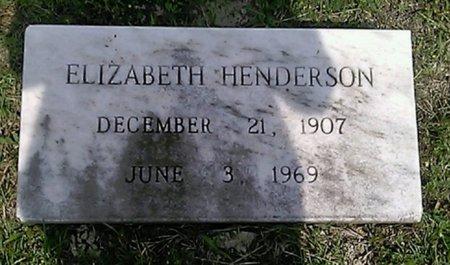 HENDERSON, ELIZABETH - Grayson County, Texas | ELIZABETH HENDERSON - Texas Gravestone Photos