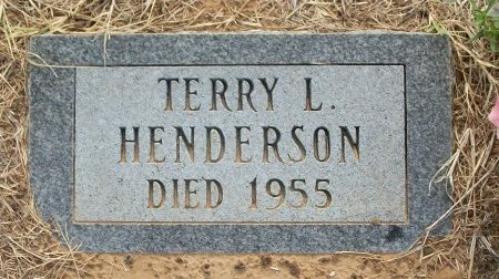 HENDERSON, TERRY LYNN - Grayson County, Texas | TERRY LYNN HENDERSON - Texas Gravestone Photos