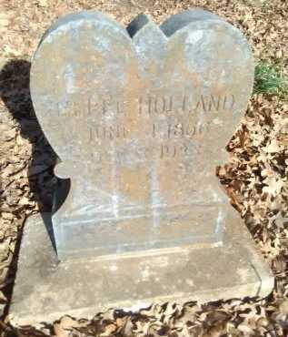 """PARKS HOLLAND, BELLE """"ISABELLA"""" - Grayson County, Texas 