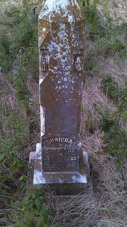 JAGO, LUCINDA - Grayson County, Texas | LUCINDA JAGO - Texas Gravestone Photos