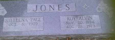 JONES, STELLENA - Grayson County, Texas | STELLENA JONES - Texas Gravestone Photos
