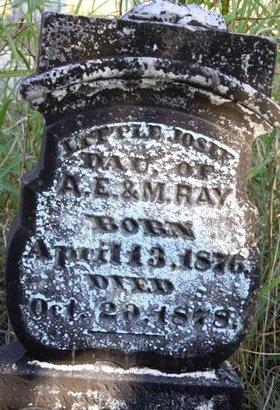 RAY, JOSIE - Grayson County, Texas   JOSIE RAY - Texas Gravestone Photos