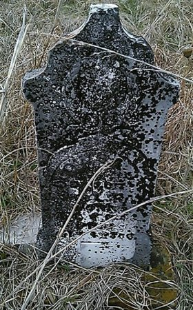 RAY, LOUISA J. - Grayson County, Texas | LOUISA J. RAY - Texas Gravestone Photos