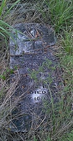 REED, MARANDA S. - Grayson County, Texas | MARANDA S. REED - Texas Gravestone Photos