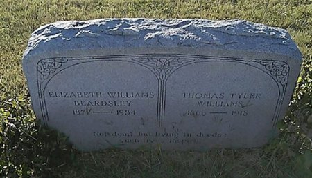 WILLIAMS, THOMAS TYLER - Grayson County, Texas | THOMAS TYLER WILLIAMS - Texas Gravestone Photos