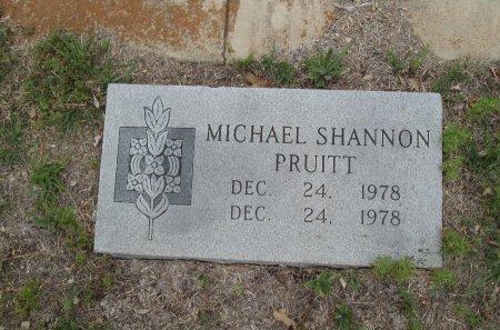 PRUITT, MICHAEL SHANNON - Hamilton County, Texas   MICHAEL SHANNON PRUITT - Texas Gravestone Photos