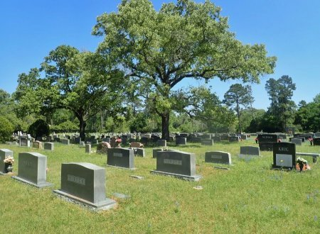 *CEMETERY VIEW,  - Harris County, Texas |  *CEMETERY VIEW - Texas Gravestone Photos