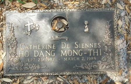 DE SIENNES, CATHERINE - Harris County, Texas | CATHERINE DE SIENNES - Texas Gravestone Photos